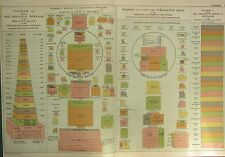 1912 LARGE ANTIQUE CHART ~ DIAGRAM OF COMPARATIVE POPULATIONS RELATIVE TONNAGE