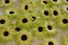 Sonnenblumen Blüten Tischdeko Streublumen Tischdeko hell grün braun