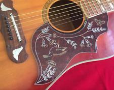 1x Guitarra Acústica Pickguard Colibrí Diseño Kay Colón Suzuki