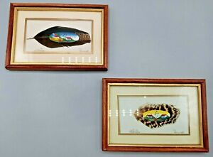 """2  Painted Feathers by Recuerdo - Costa Rica - Signed/Matted/ Framed - 4½"""" x 6½"""""""