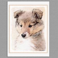 6 Sheltie Shetland Sheepdog Puppy Blank Art Note Greeting Cards