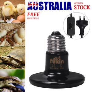 100/150/200W Reptile Brooder Incubator Ceramic Infrared Light Heat Emitter Lamp