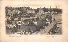 THE SANDS DUMFRIES UK ENGLAND TOWN VIEW COWS HORSES POSTCARD 1903