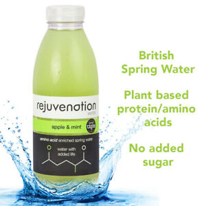 Rejuvenation Water Apple & Mint Plant based Protein Water 12x500ml