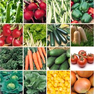 150+ Heirloom Vegetable Seed 6 Variety Garden Set #2 Emergency Survival NON-GMO