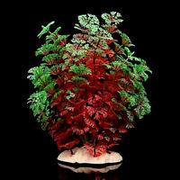 Rot Grün Künstliche Plastikwasser-Pflanzen für Aquarium-Aquarium Dekoration 23cm