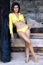 Raquel Welch yellow bikini bottoms bare midriff 11x17 Mini Poster