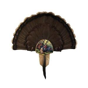 Walnut Hollow Country Turkey Fan Mount & Display Kit, Oak with Spring Strut I...
