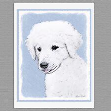 6 Kuvasz Dog Blank Art Note Greeting Cards