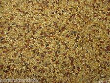 Kanarienfutter 5 kg ohne Rübsen Kanarien Vogelfutter Mischfutter