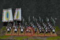 28mm Napoleonic Wars DPS Painted Austria German Fusilier Battalion WP7656