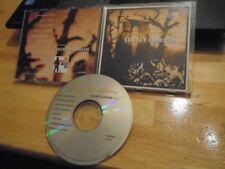 RARE PROMO Bruce Springsteen CD sngl Secret Garden CLARENCE CLEMONS Max Weinberg