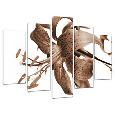 Set of 5 Brown Sepia Canvas Prints Pictures Living Room Wall Art 5055