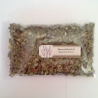 1 oz. Horsetail C/S (Equisetum Arvense) <28 g / .063 lb> Dried Shavegrass