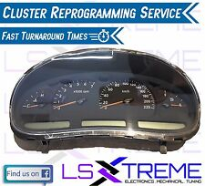 VT Commodore Cluster Reprogramming Service Calais Berlina Executive Ss S Acclaim