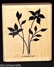 Stemmed Flowers Rubber Stamp Single with Leaves by Stampin Up Garden Sihouettes