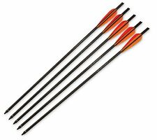 "Barnett Headhunter 20"" Crossbow Arrows 5 Pack with Field Points 16075"