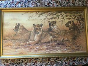 Large Vintage Shadows Lion Picture Print. Kim Brooks. Ornate Gold Frame. 1978.