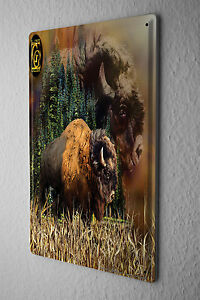 Decorative Tin Sign Vet Practice bison  Metal Plate 8X12