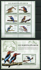 Comoros Comores 2009 MNH Kingfishers 6v M/S 1v S/S Martins-Pecheur Birds Stamps