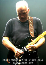 SUEDE GUITAR STRAP FEATURED ON GILMOUR-ISH DOT COM-LONG LENGTH
