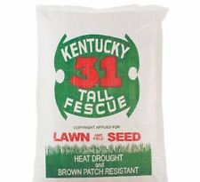 Kentucky 31 Tall Fescue Grass 1 lb of Quality Grass Seed 2018 Planting Season