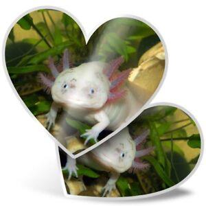 2 x Heart Stickers 10 cm - Axolotl Aquarium Dragon Fish  #3065
