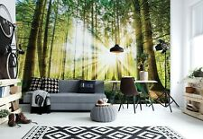 Wall mural photo wallpaper 312x219cm Green summer forest bedroom & living room