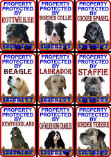 Beware Of The Dog Signs Property Protected Various Breeds Set A
