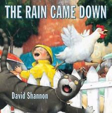 The Rain Came Down David Shannon