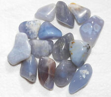2 oz Bulk BLUE CHALCEDONY Med Tumbled Stone Metaphysical Healing Crystal FS