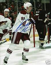 Kyle Turris Phoenix Coyotes Signed 8x10 Picture