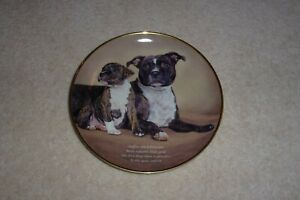 STAFFORDSHIRE BULL TERRIER PLATE ORIGINAL LIMITED EDITION WITH CERTIFICATE 1