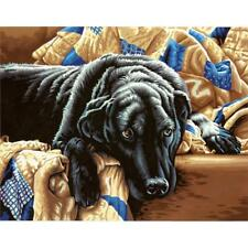 PAINTWORKS Paint by Number Kit GUILTY PLEASURES Dog 14 x 11 inches Dimensions