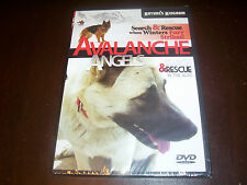 AVALANCHE ANGELS Search & Rescue Alps Alpine Dogs Teams Trainers Dog DVD NEW