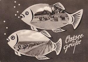 Ostseegrüße  ,Ansichtskarte