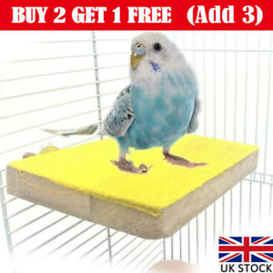New Bird Stand Rough Sand Parrot Colorful Platform Toy Parakeet Cage Accessories