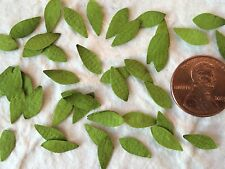100 Leaves Mini Green leaf Handmade Mulberry Paper Cards Scrapbooking