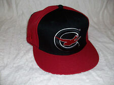STALL & DEAN COLUMBUS BLUE BIRDS FITTED HAT (7 1/2)