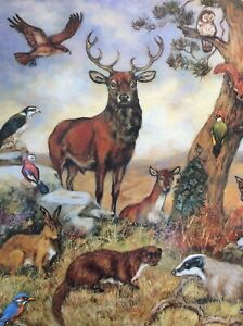 2 4 6 8 Sheets Birthday Gift Wrap Woodland Deer  Wrapping Paper Glossy Animals