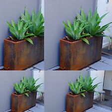 Large Outdoor Corten Steel Planter Box
