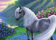 Grey arabian horse spring flowers lake sunlight limited edition aceo print art