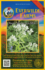 2000 Hairy Mountain Mint Wildflower Seeds - Everwilde Farms Mylar Seed Packet