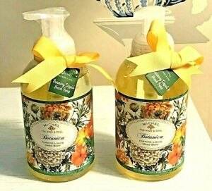 Michel Design Works Botanica Foaming Liquid Hand Soap Shea Butter Aloe Vera NEW