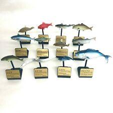 3D Capsule Encyclopedia Saltwater Fish 3 Mini Figure Set of 12 Takara Tomy Japan