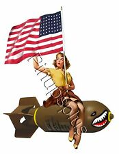 WWII Bomber USA Flag Pinup Girl Waterslide Decal for Guitars & More S780