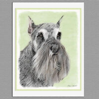 6 Schnauzer Dog Blank Art Note Greeting Cards