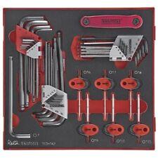Teng Tools MEGA vendita tedht 42 HEX Allen Chiave Torx Master Key Set nel caso di schiuma/