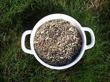 Solidago herb, goldenrod, wound wort 1oz (30 gram) Organic herbal tea 2017!!