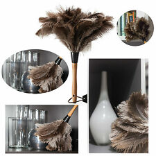 Ostrich Feather Duster Professional Natural Anti-Static Wooden Handle 14""